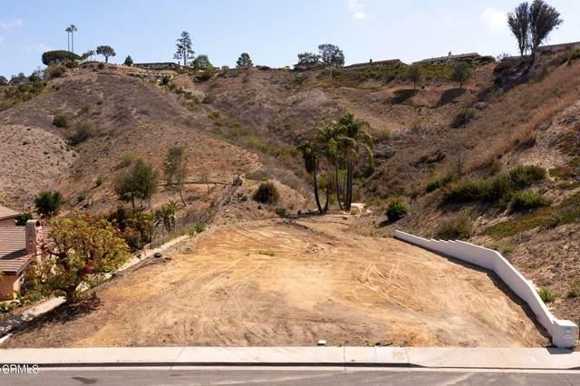 6000 Bridgeview Drive, Ventura, CA 93003 (#V1-6012) :: Corcoran Global Living