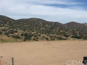 0 Vac/Vic Shannon Valley Rd/Luck Road, Acton, CA 93510 (#BB21112430) :: The Marelly Group | Sentry Residential
