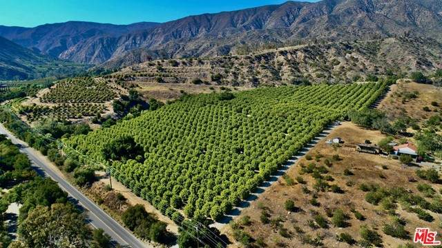 2856 Maricopa Highway - Photo 1