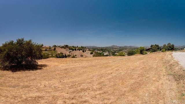 0 Winter Haven Ct, Fallbrook, CA 92028 (#NDP2106070) :: Z REALTY
