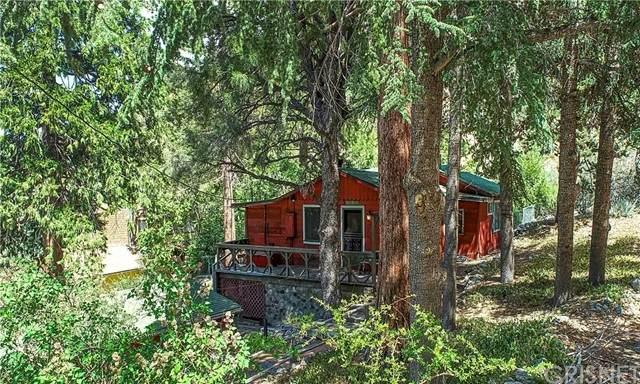 218 Pine Canyon Road, Frazier Park, CA 93225 (#SR21115394) :: Powerhouse Real Estate