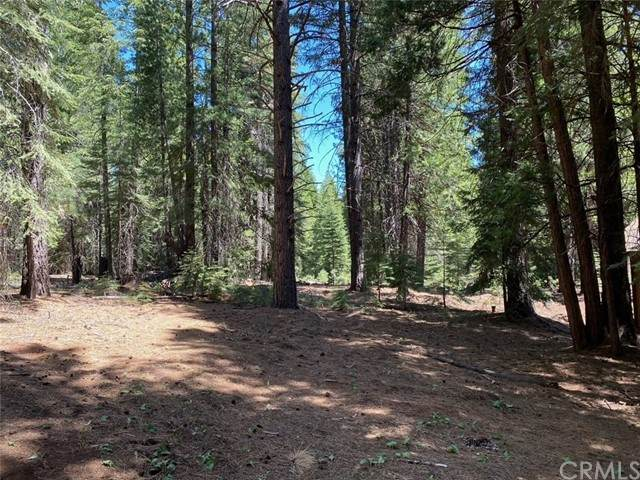 173 Peninsula Drive, Lake Almanor, CA 96137 (#SN21116658) :: The Marelly Group | Sentry Residential