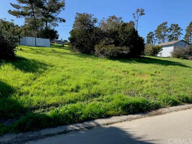 0 Mccabe Drive, Cambria, CA 93428 (#SC21116951) :: The Marelly Group | Sentry Residential