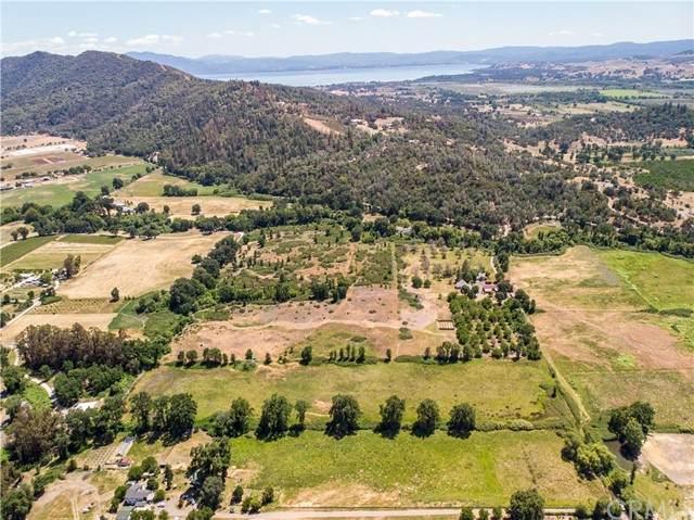 1700 Pitney Lane, Upper Lake, CA 95485 (#LC21117308) :: Wahba Group Real Estate | Keller Williams Irvine