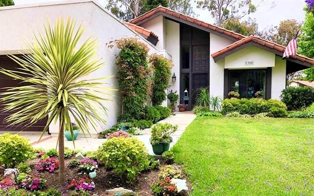1355 Camino Teresa, Solana Beach, CA 92075 (#NDP2106141) :: Berkshire Hathaway HomeServices California Properties