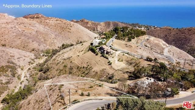4702 Latigo Canyon Road - Photo 1
