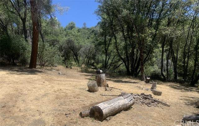 0 13.46 AC Scott Drive, Oakhurst, CA 93644 (#FR21117387) :: The Kohler Group