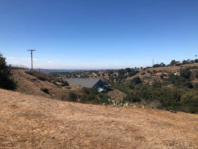 0 Calle Dos Lomas, Fallbrook, CA 92028 (#NDP2106181) :: Jett Real Estate Group