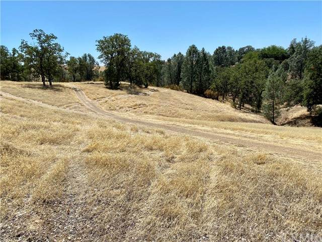 17323 Wagon Wheel Drive, Corning, CA 96021 (#SN21119201) :: The Marelly Group | Sentry Residential
