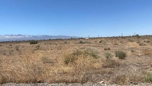 460151 Vacant Land - Photo 1