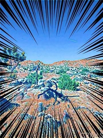 0 Nolina Cove, Joshua Tree, CA 92252 (#JT21120266) :: Team Tami