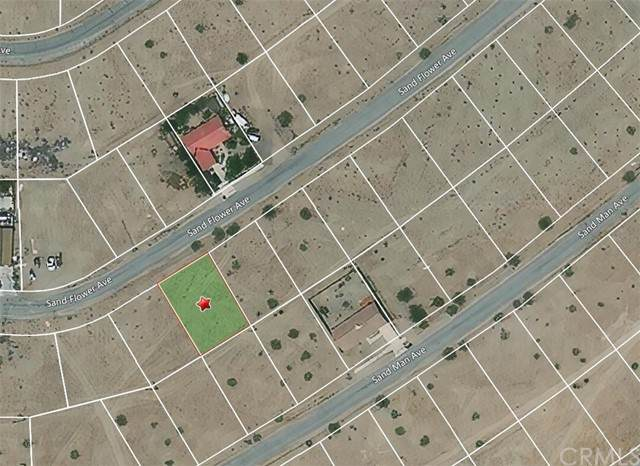 2288 Sand Flower Ave., Thermal, CA 92274 (MLS #PW21116614) :: Desert Area Homes For Sale