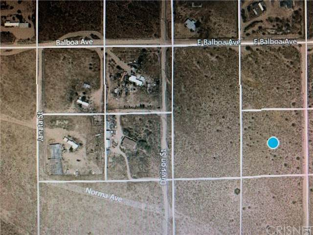 0 E Norma Ave, Mojave, CA 93501 (#SR21121728) :: Team Forss Realty Group