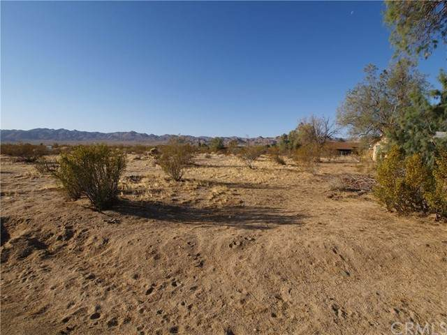 0 Walpi Drive, Joshua Tree, CA 92252 (#JT21121827) :: The Marelly Group   Sentry Residential