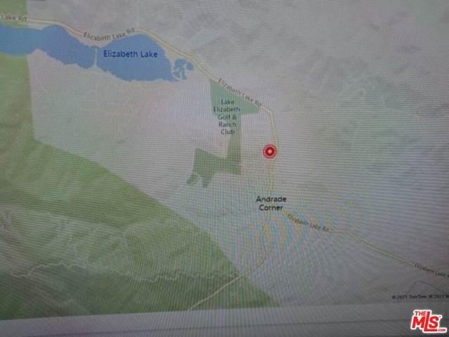 0 Vac/Datetree Dr/Vic Chip Drive, LEL - Lake Elizabeth, CA 93532 (MLS #21745634) :: Desert Area Homes For Sale