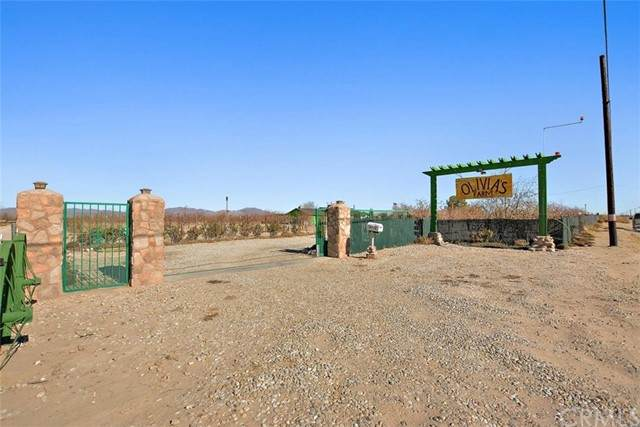 34738 Old Woman Springs Road, Lucerne Valley, CA 92356 (#TR21119194) :: Powerhouse Real Estate