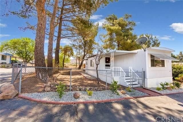 2501 Sierra Highway #142 #142, Acton, CA 93510 (#SR21118739) :: Wahba Group Real Estate | Keller Williams Irvine