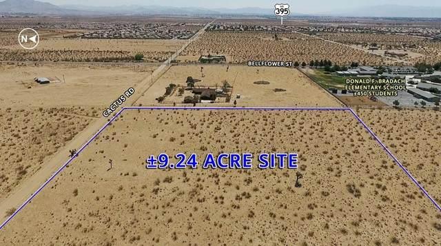 11143 Cactus Road - Photo 1