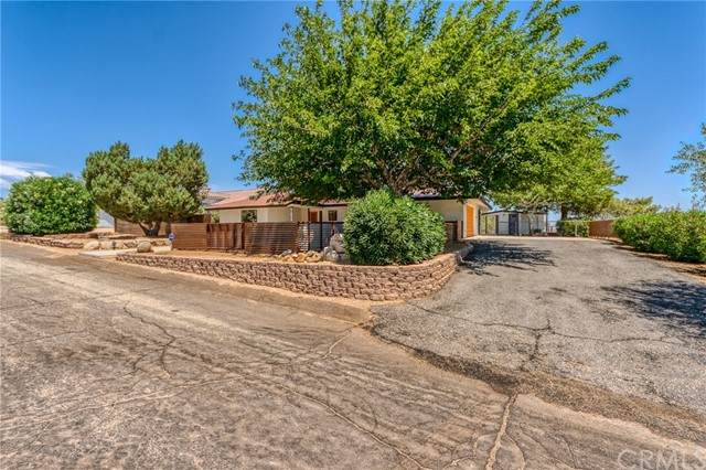 61834 Alta Mesa Drive, Joshua Tree, CA 92252 (#JT21122055) :: The Marelly Group | Sentry Residential