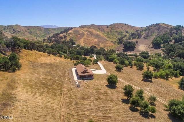 7477 Wheeler Canyon Road, Santa Paula, CA 93060 (#V1-6285) :: Zen Ziejewski and Team