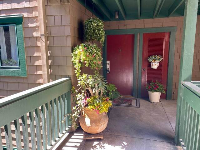 318 Soquel Avenue B2, Santa Cruz, CA 95062 (#ML81847795) :: Powerhouse Real Estate