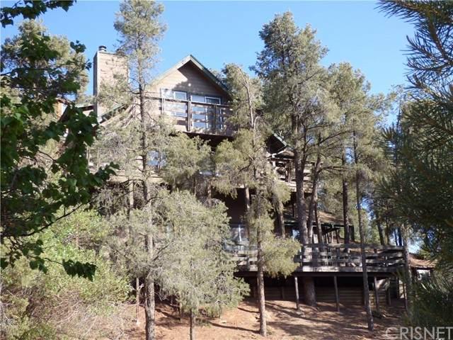 1316 Leisure Lane, Frazier Park, CA 93225 (#SR21117690) :: Steele Canyon Realty