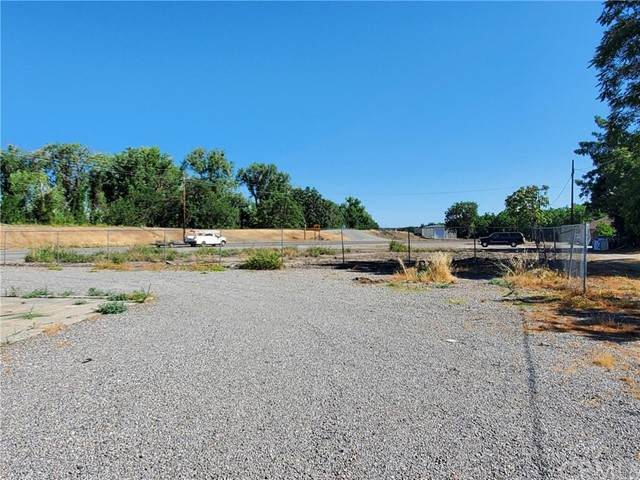 0 Hwy 162, Butte City, CA 95920 (#SN21124034) :: The Marelly Group | Sentry Residential