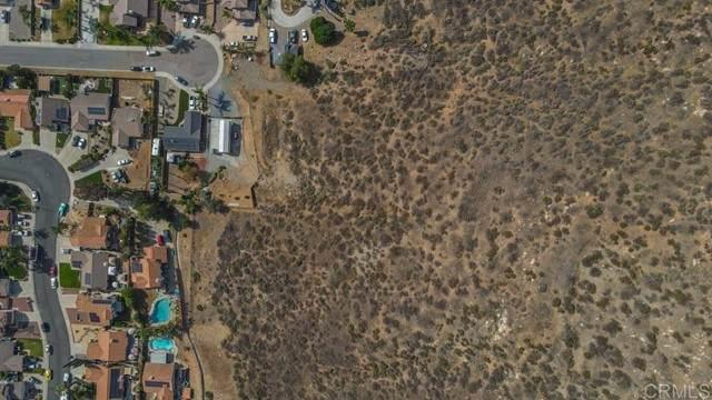 Rodeo Drive, Lakeside, CA 92040 (#PTP2104017) :: Wahba Group Real Estate | Keller Williams Irvine
