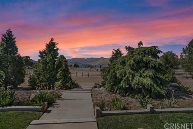 19407 Cavalier Court, Tehachapi, CA 93561 (#SR21122929) :: Wahba Group Real Estate | Keller Williams Irvine