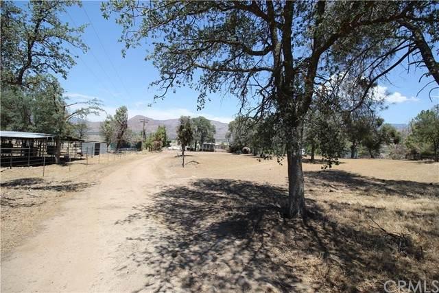 20985 Walker Basin Road, Caliente, CA 93518 (MLS #OC21125132) :: Desert Area Homes For Sale