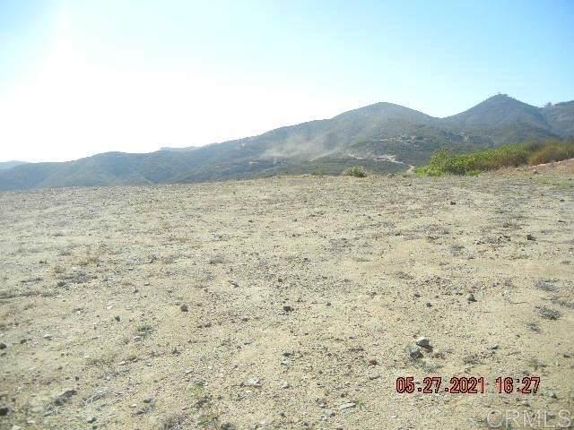 20860 Wild Willow Hollow Road, Escondido, CA 92029 (#PTP2104038) :: The DeBonis Team