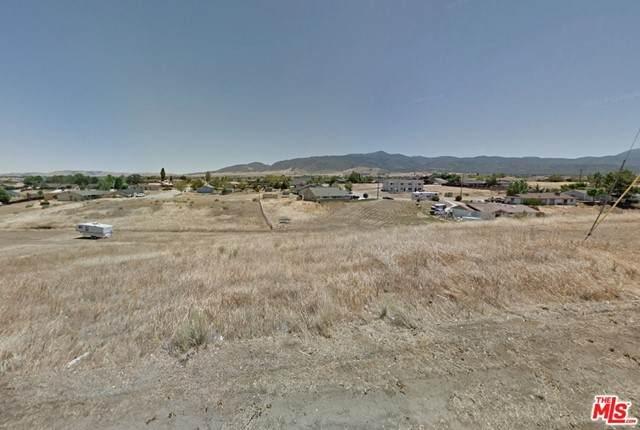 19920 Mesa Drive, Tehachapi, CA 93561 (#21747362) :: Steele Canyon Realty