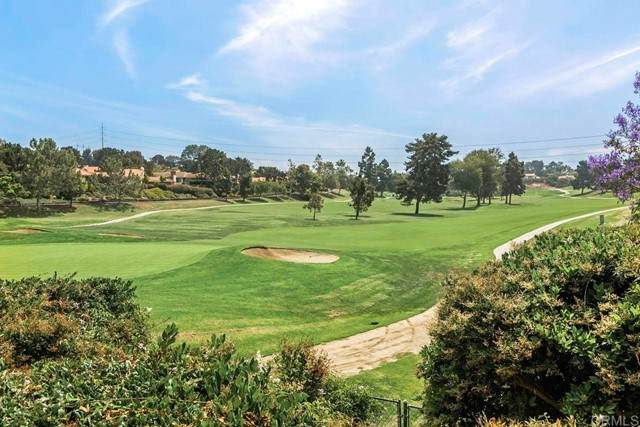 164 Las Banderas, Solana Beach, CA 92075 (#NDP2106711) :: Berkshire Hathaway HomeServices California Properties