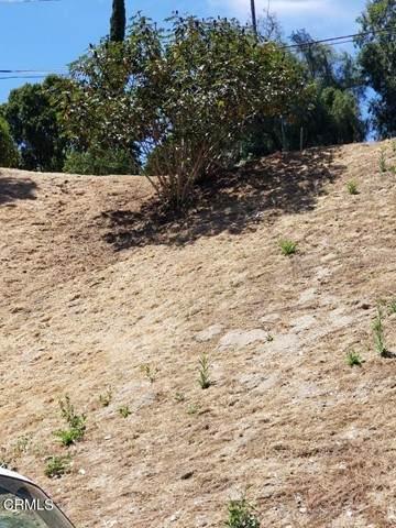 5040 La Calandria Way, Los Angeles (City), CA 90032 (#P1-5169) :: The Marelly Group   Sentry Residential