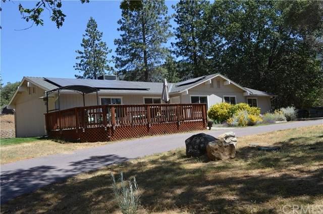 45315 Forest Ridge Drive, Ahwahnee, CA 93601 (#FR21126454) :: Twiss Realty