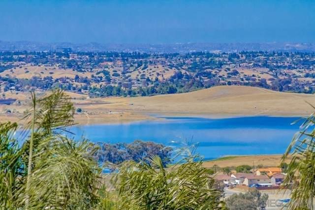 1005 La Mesa Ave, Spring Valley, CA 91977 (#210016122) :: Wahba Group Real Estate   Keller Williams Irvine