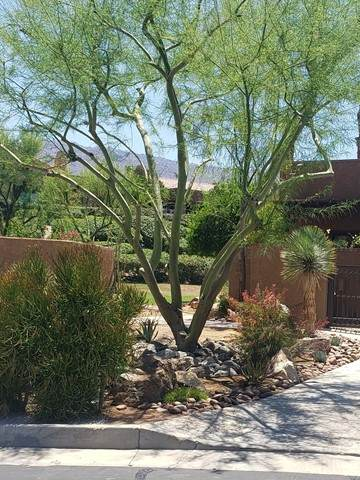 48634 Palo Verde Court, Palm Desert, CA 92260 (#219063417DA) :: The Costantino Group | Cal American Homes and Realty