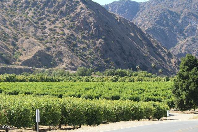 0 Goodenough Road, Fillmore, CA 93015 (#V1-6390) :: Koster & Krew Real Estate Group | Keller Williams