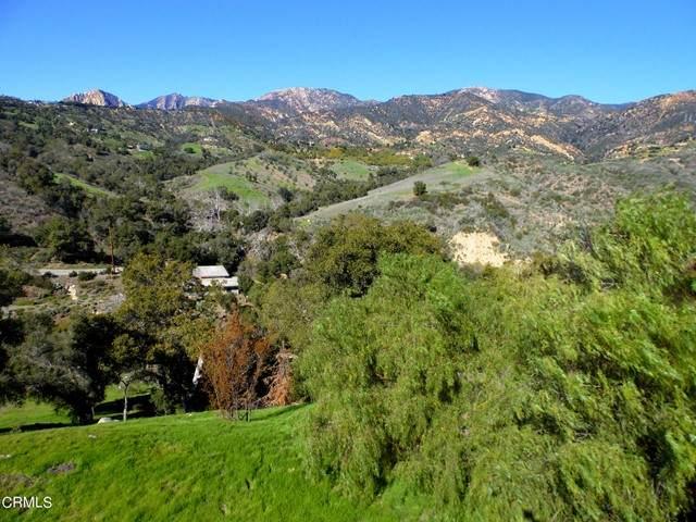 225 Conejo Road, Santa Barbara, CA 93103 (#V1-6393) :: Wahba Group Real Estate | Keller Williams Irvine