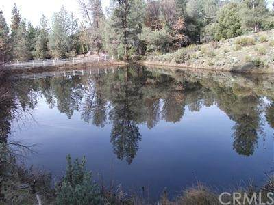 3344 Crystal Cove (Pond) Lane, Mariposa, CA 95338 (#MP21127093) :: Twiss Realty