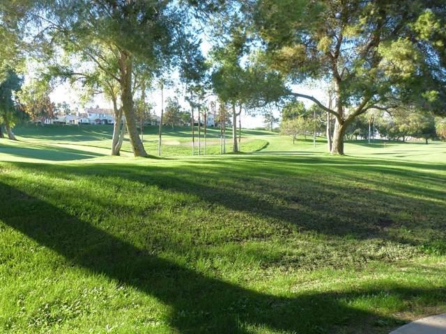 337 Desert Falls Drive E, Palm Desert, CA 92211 (#219063459DA) :: Blake Cory Home Selling Team