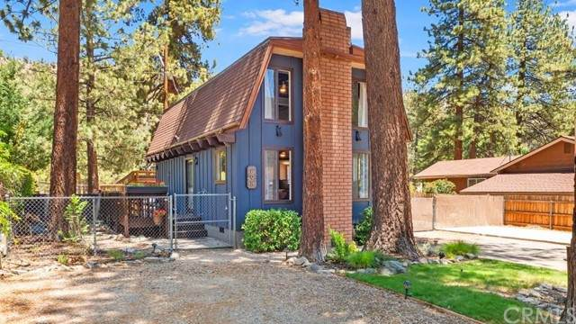 898 Snowbird Road, Wrightwood, CA 92397 (MLS #CV21127874) :: Desert Area Homes For Sale