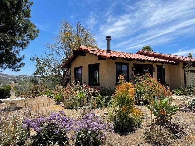 1769 Via Napoli, Fallbrook, CA 92028 (#NDP2106823) :: Mark Nazzal Real Estate Group