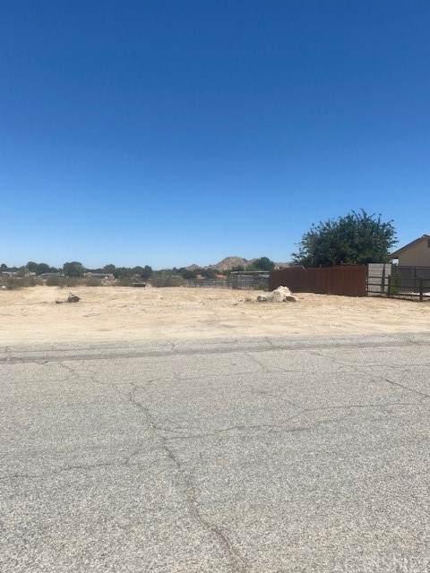 0 164th St E, Lake Los Angeles, CA 93591 (#SR21128162) :: Swack Real Estate Group | Keller Williams Realty Central Coast