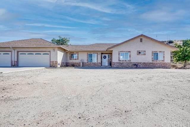 4544 E Avenue V5, Palmdale, CA 93552 (#SR21129105) :: Berkshire Hathaway HomeServices California Properties