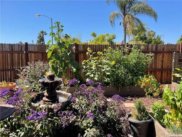 31272 Calle San Pedro, San Juan Capistrano, CA 92675 (#OC21128702) :: Legacy 15 Real Estate Brokers