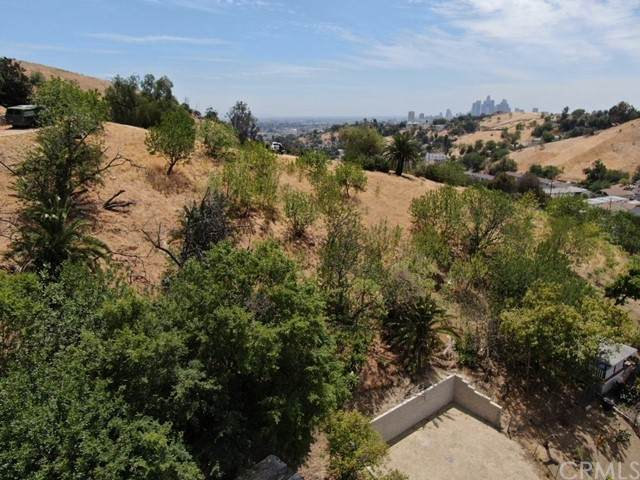 4101 Turquoise, Los Angeles (City), CA 90031 (#DW21129383) :: Jett Real Estate Group