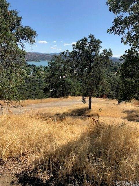 12777 High Valley Road, Clearlake Oaks, CA 95423 (#LC21128296) :: Compass