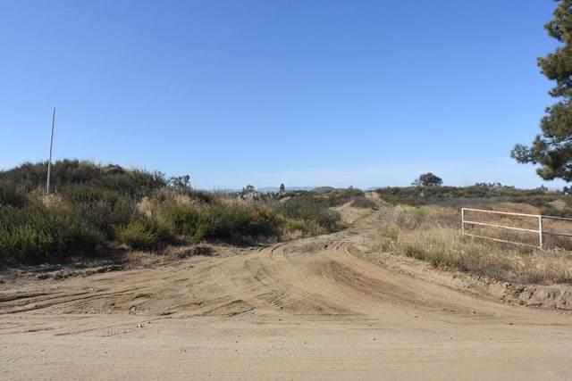 0 Mark Trail Trail, Hemet, CA 92544 (#219063564PS) :: Holmes Muirhead Team at Reviron Realty