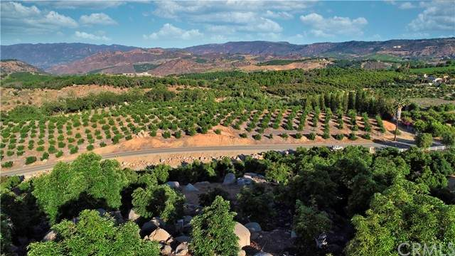 0 El Prado, Temecula, CA 92590 (#SW21129800) :: Steele Canyon Realty